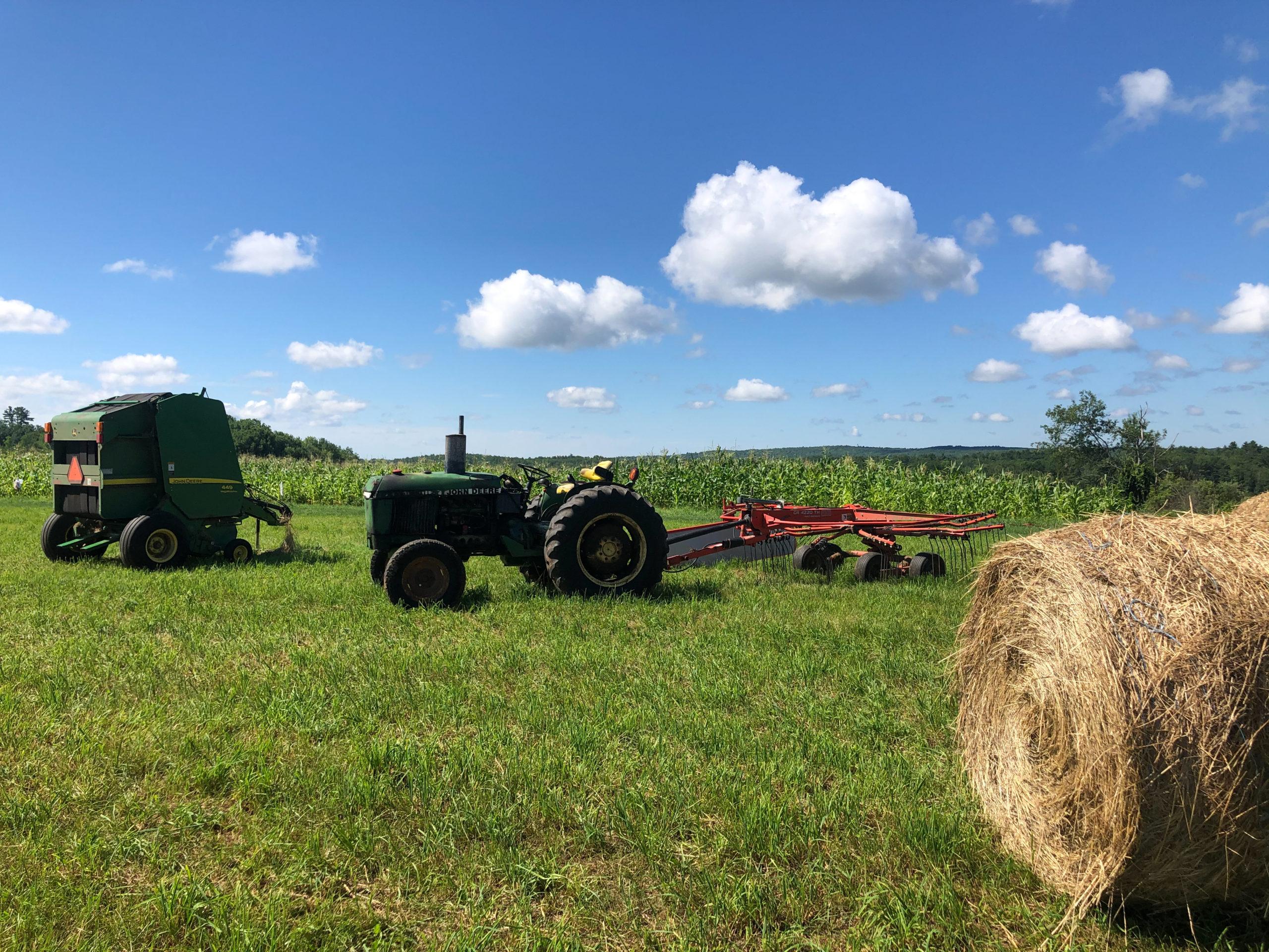 Liberation Farms